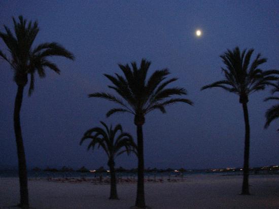 Iberostar Ciudad Blanca: Beach at night, you can walk around to the port.