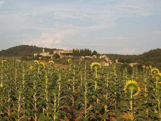 Castello di Modanella: Vue du Castello