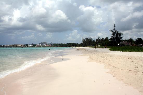 Nautilus Beach Apartments: Una parte della spiaggia davanti