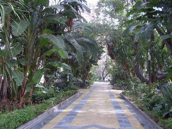 CLC San Diego Suites: Marbella central park