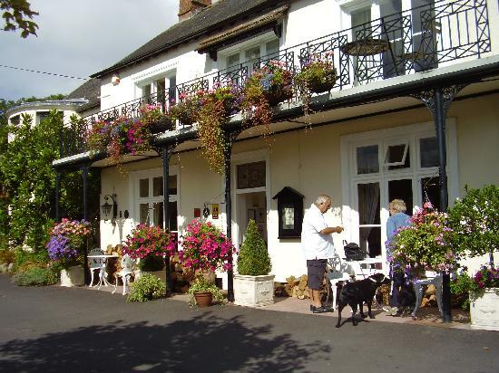 Farthings Country House Hotel and Restaurant : Beautiful flowers at the Farthings entrance