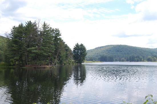 Allegany State Park Campground: Quaker Lake 2