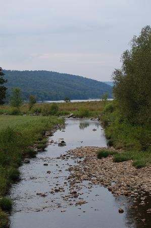 Allegany State Park Campground: Quaker 3