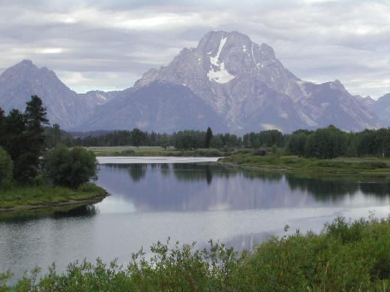 Heart Six Guest Ranch : A room with a view - Tetons and Buffalo