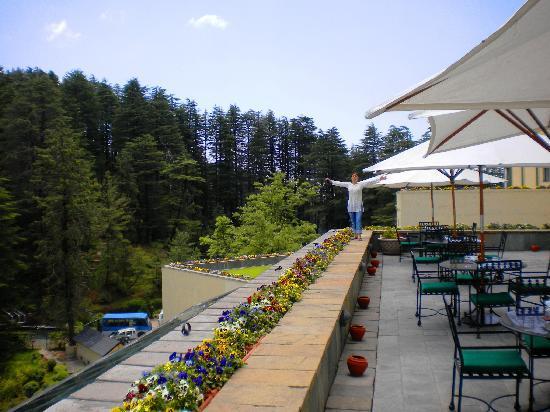 Wildflower Hall, Shimla in the Himalayas: terraza