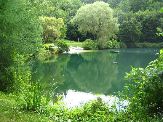 The Birches at Steep Acres Farm: The beautiful pond