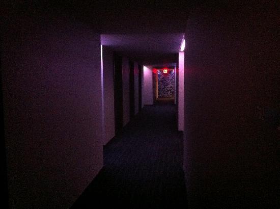 W New York - Downtown: The hallways are a little dark