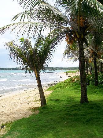 La Princesa de la Isla: La piccola spiaggia dell'hotel.