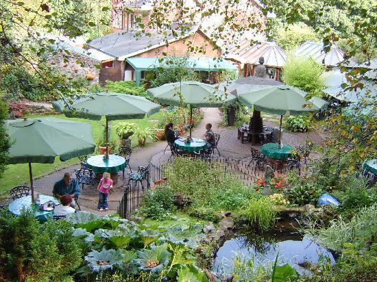 Gardens of Ramblers Retreat