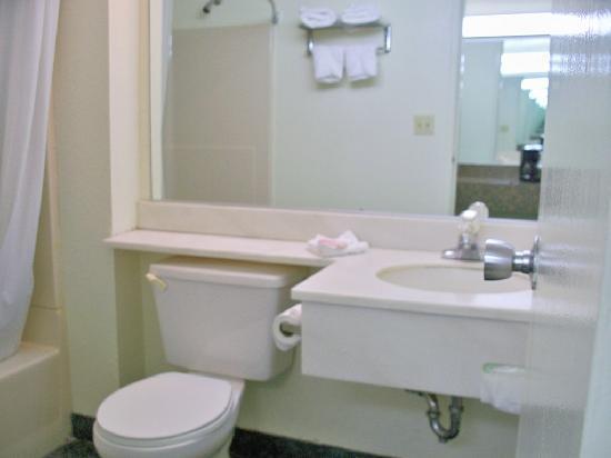 A Victory Inn - West Dearborn : Basic bathroom