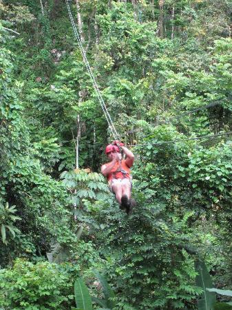 Ecoquest Zipline Tour Puerto Rico