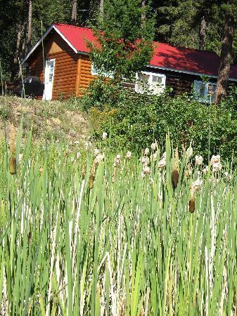 Dutch Lake Resort & RV Park: Salter Cabin