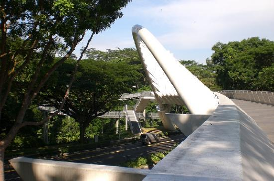 Alexandra Bridge - Picture of The Southern Ridges, Singapore