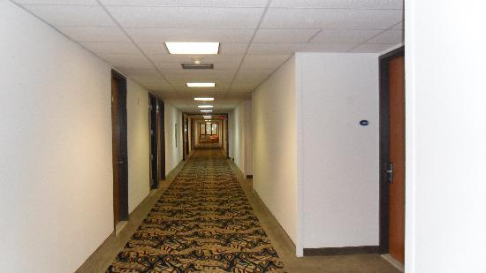 Howard Johnson Centro Cardiovascular San Juan: Hallway