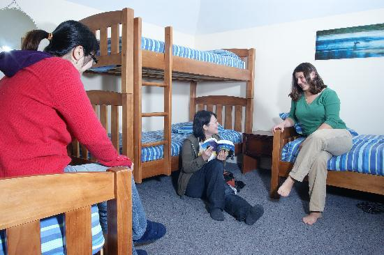 Almond House Backpackers: 4 Bed Share Room