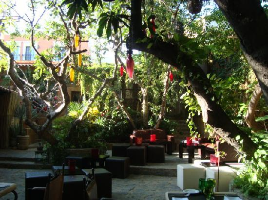 Another view of the courtyard picture of tequila san for Romantic restaurant san jose