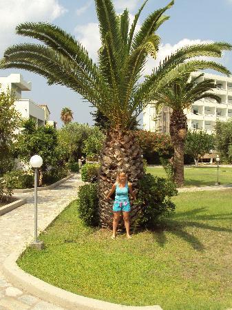 Hotel Atlantis : nice garden
