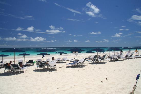 Elbow Beach, Bermuda: la spiaggia non è mai affollata,anche in Agosto