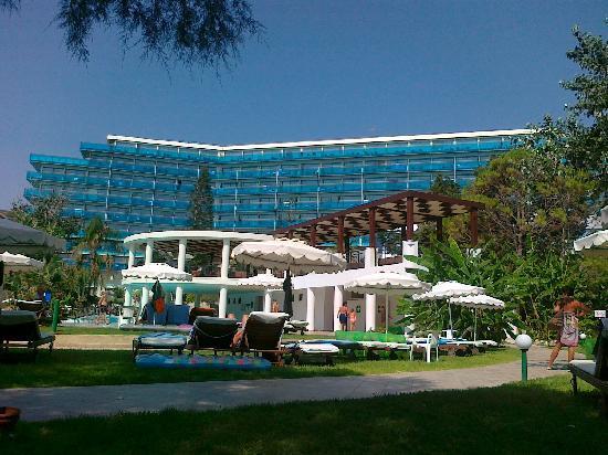 Hotel Calypso : Vista dalla piscina