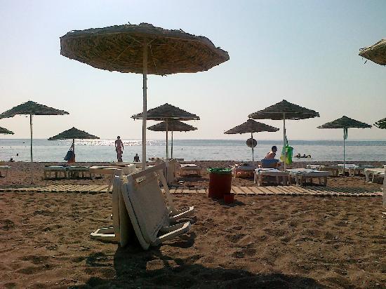 Hotel Calypso : La spiaggia dell'hotel