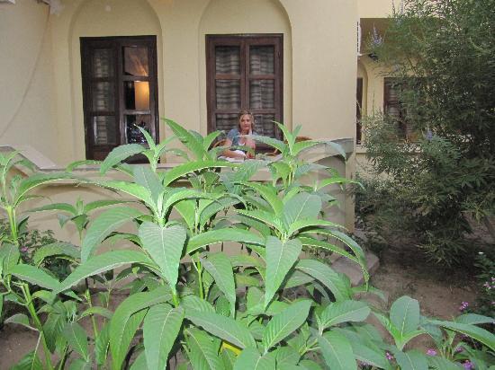 El Nakhil Hotel & Restaurant: desde mi habitación