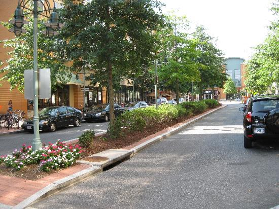 Superb Hilton Garden Inn Arlington/Shirlington: Street In Front Of Hotel