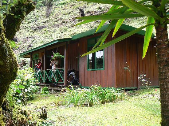 Trogon Lodge San Gerardo de Dota : notre habitation