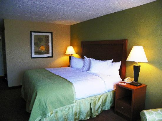 Ramada Ellsworth : King Room