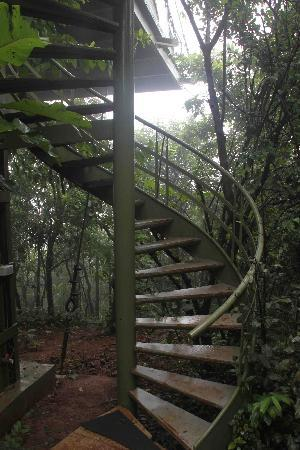The Machan: staircase to heaven