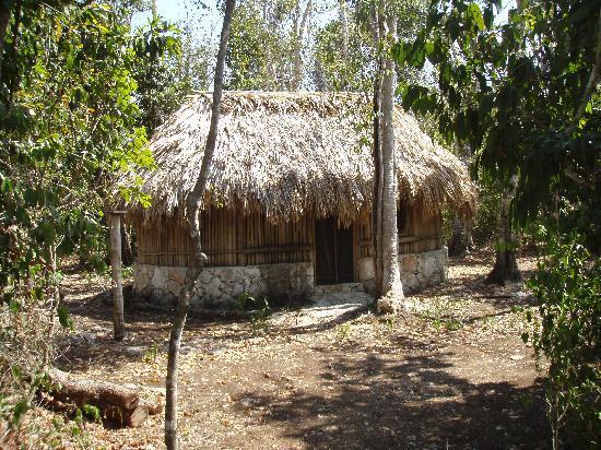 Villa Maya: Mayan Cabaña - Overnight