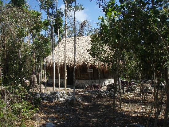 Villa Maya: Mayan Cabaña