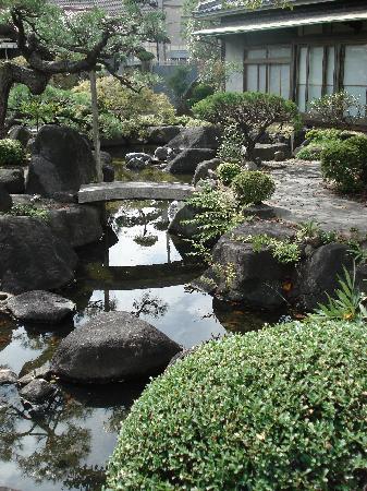 Carpe Diem : petit étang