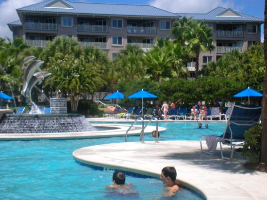 Marriott's Grande Ocean : Dolphin Pool