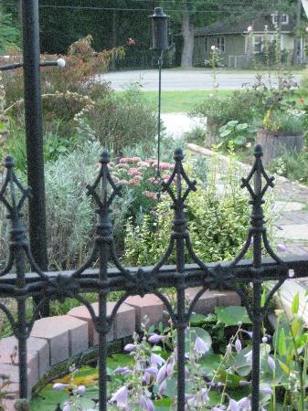 Cafe Gulistan garden