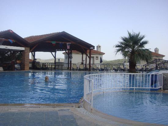 Nicholas Lodge Hotel: pool
