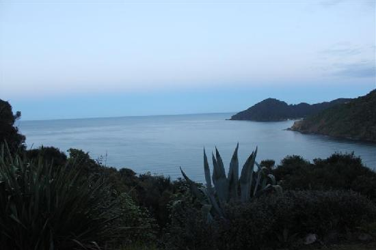 Great Barrier Island, New Zealand: View from the deck