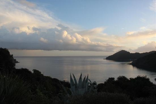 Great Barrier Island, Selandia Baru: Skyscape