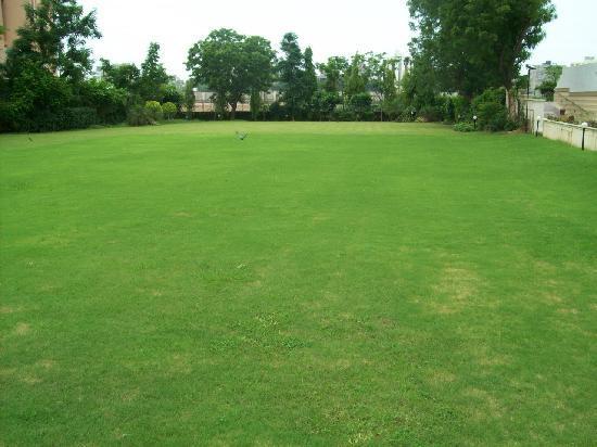 Sarovar Portico Ahmedabad: Lawn