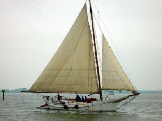 St. Michaels, MD: Skipjack