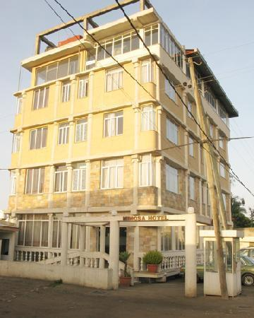 Mimosa Hotel: The Building