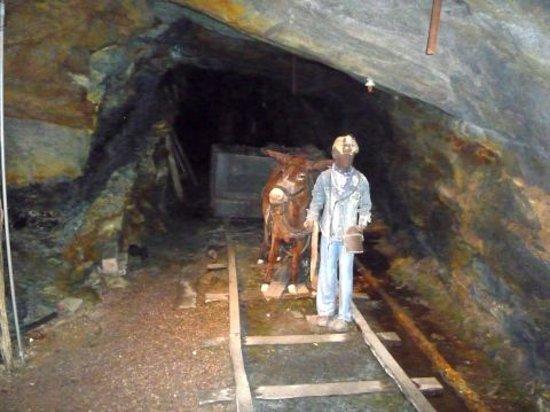 Pennsylvania Anthracite Heritage Museum : Lackawanna Coal Mine Tour