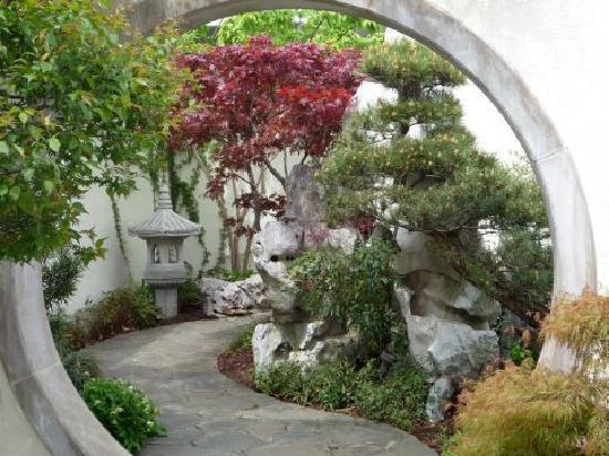 US National Arboretum Washington DC Top Tips Before You Go - Us national arboretum google maps