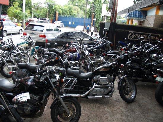 Handle Bar & Grill: Bikes at Handlebar