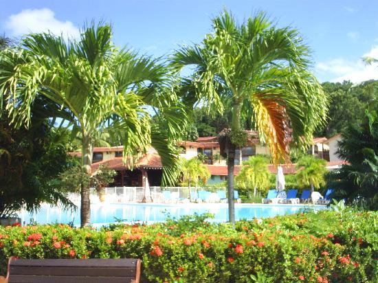 Residence de l'Anse Caritan : Piscine