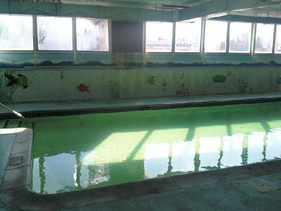 Phoenix Hotel & Banquet Center: Green pool, mold on the back wall