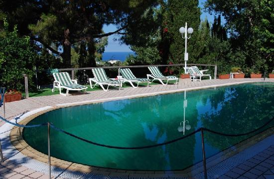 Villa Le Magnolie: Piscina