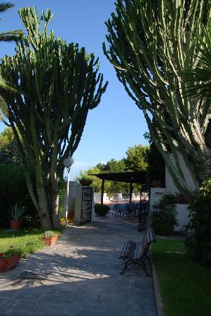 Villa Le Magnolie: Giardino
