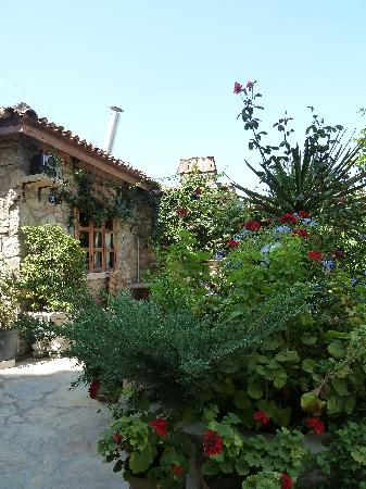 Hotel Nazar: Great garden