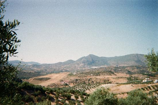 Andalucian Cycling Experience Day Trips: Great scenery