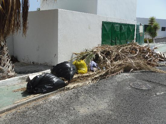 Club Green Oasis Loma Verde: Rubbish dumped